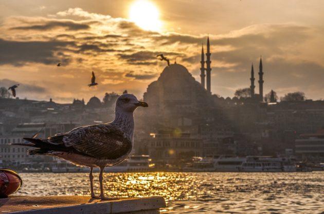 sta posetiti u istanbulu